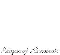 Logo Irys White